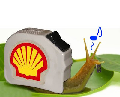 Funny Pictures: Shell
