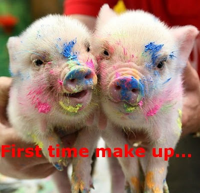 Funny Pictures: Funny pigs ready for party