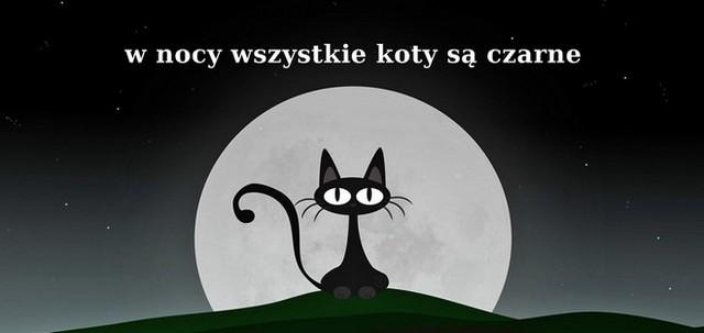 w nocy  wszystkie koty są czarne