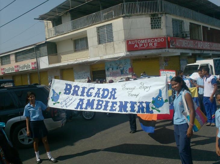 DESFILE DE AGUA 2010
