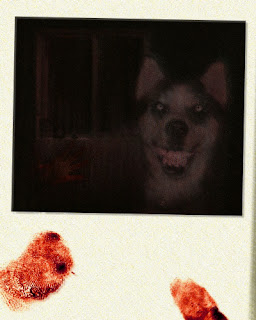 http://2.bp.blogspot.com/_DiNzV9H0R0U/TTbb7Xv2EjI/AAAAAAAAAaY/fEzNLE4GZYY/s320/Smiledog.jpg