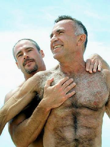 oso gay adulto