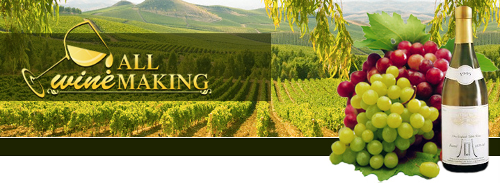 AllWineMaking.com on Blogger