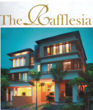 THE RAFFLESIA - DAMANSARA PERDANA, PJ