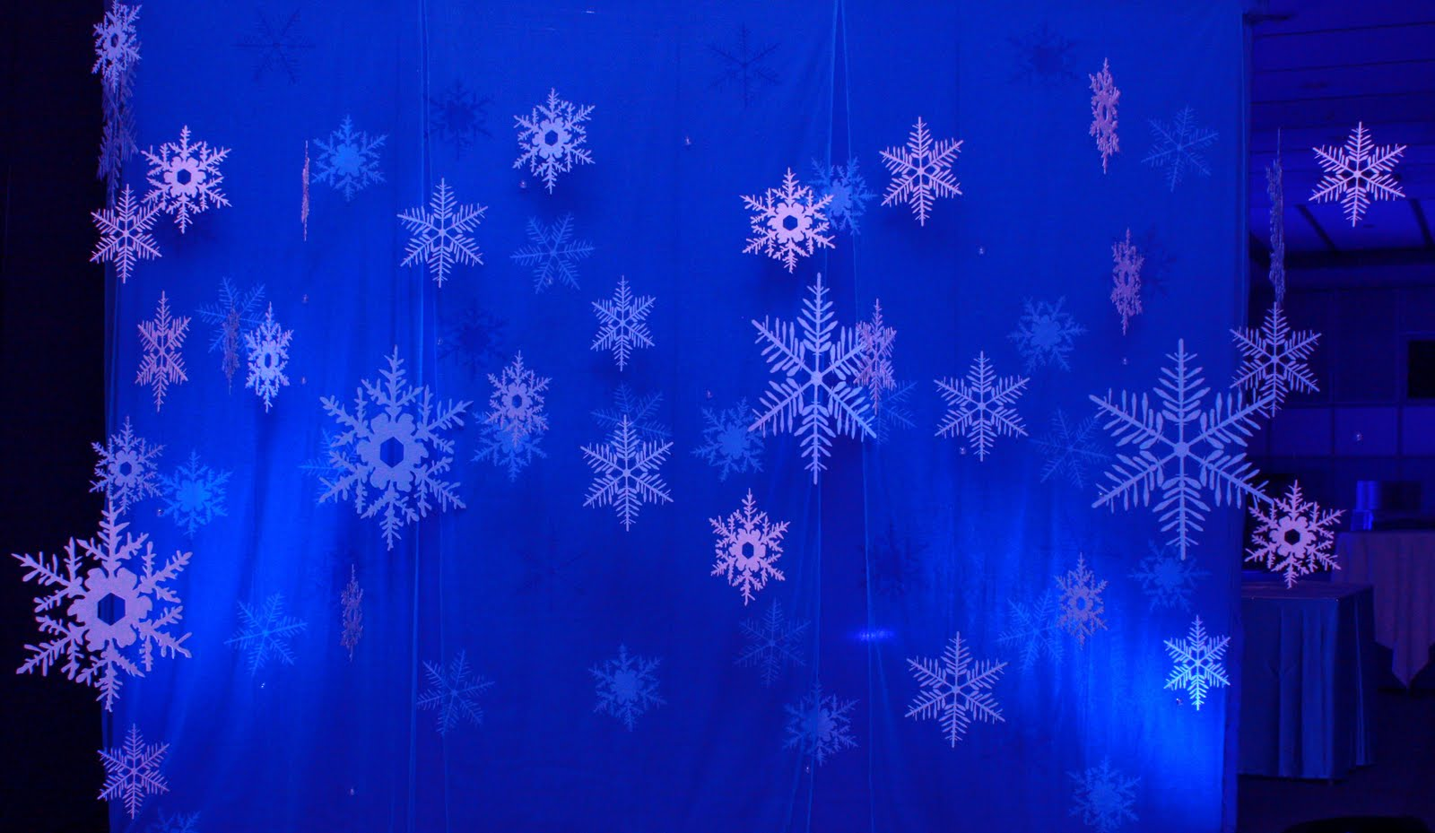 Snow Flakes in Blue Curtain