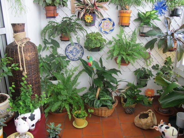 La belleza invisible del interior de las plantas y las flores