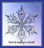 A special Snowflake Award from Sandi