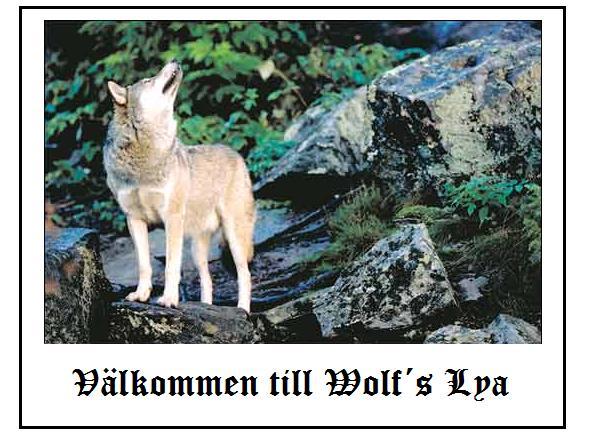 Wolfs lya