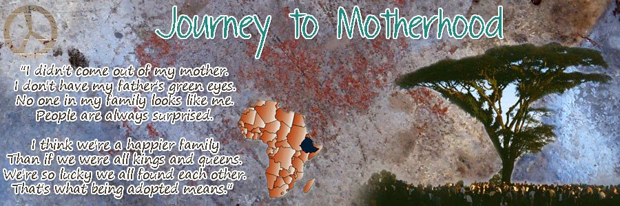 <b>Journey to Motherhood</b>
