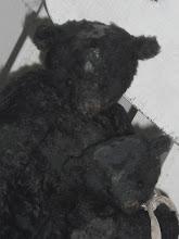 Bärenliebe Gewinnspiel