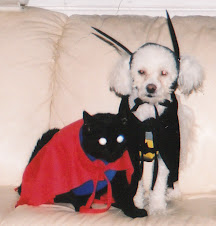 Merlin & Pop Pop as Batman & Superman