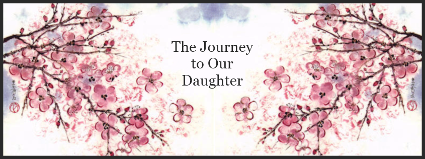 The Journey to our Daughter