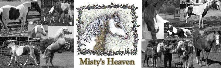 Misty's Heaven