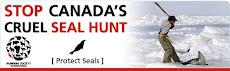 Stop Canadas cruel sea hunt