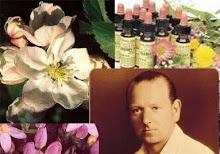 Os Florais do Dr. Bach e outros...