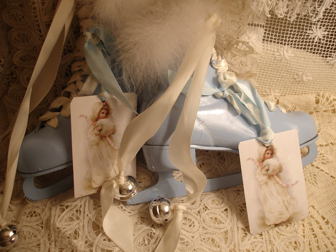 MARIE ANTOIETTE BLUE ICE SKATES