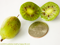 kiwiberry size