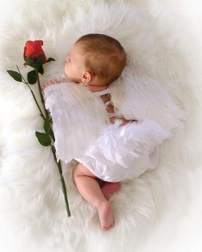 El angelito que tanto espero
