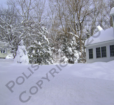 Picture of snow covered roof
