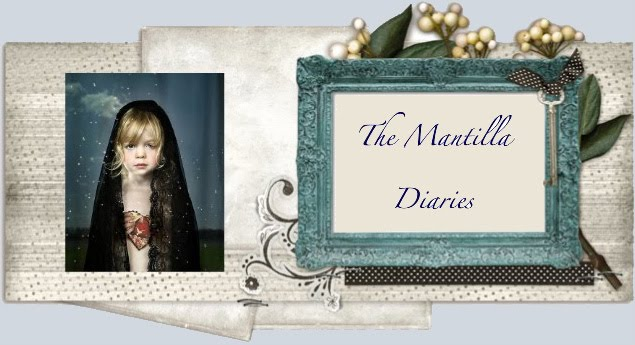 The Mantilla Diaries