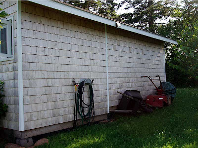 The back side of the shed where Hubby stores his rotiller and wheelbarrow because he can't cram anything else in his side.