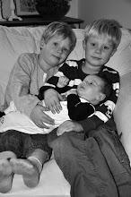 Mina underbara söner