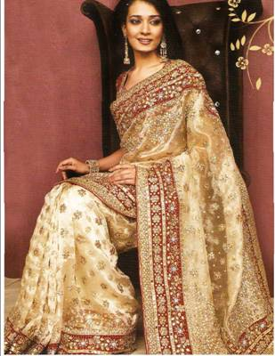 Beige Tissue Saree with Blouse  -  Newly Arrived!
