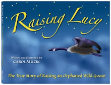 Raising Lucy - The True Story of Raising an Orphaned Wild Goose