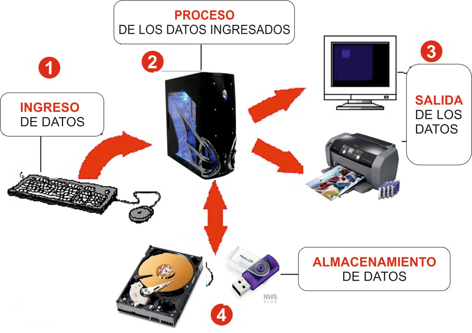 procesamiento informacion computadora: