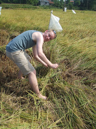 Dan in Vietnam