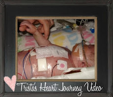 Click below to view Trista's Heart Journey Video