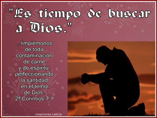 10 Versículos Bíblicos de Consuelo en medio del dolor y