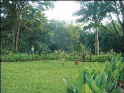 Parque el Paramillo