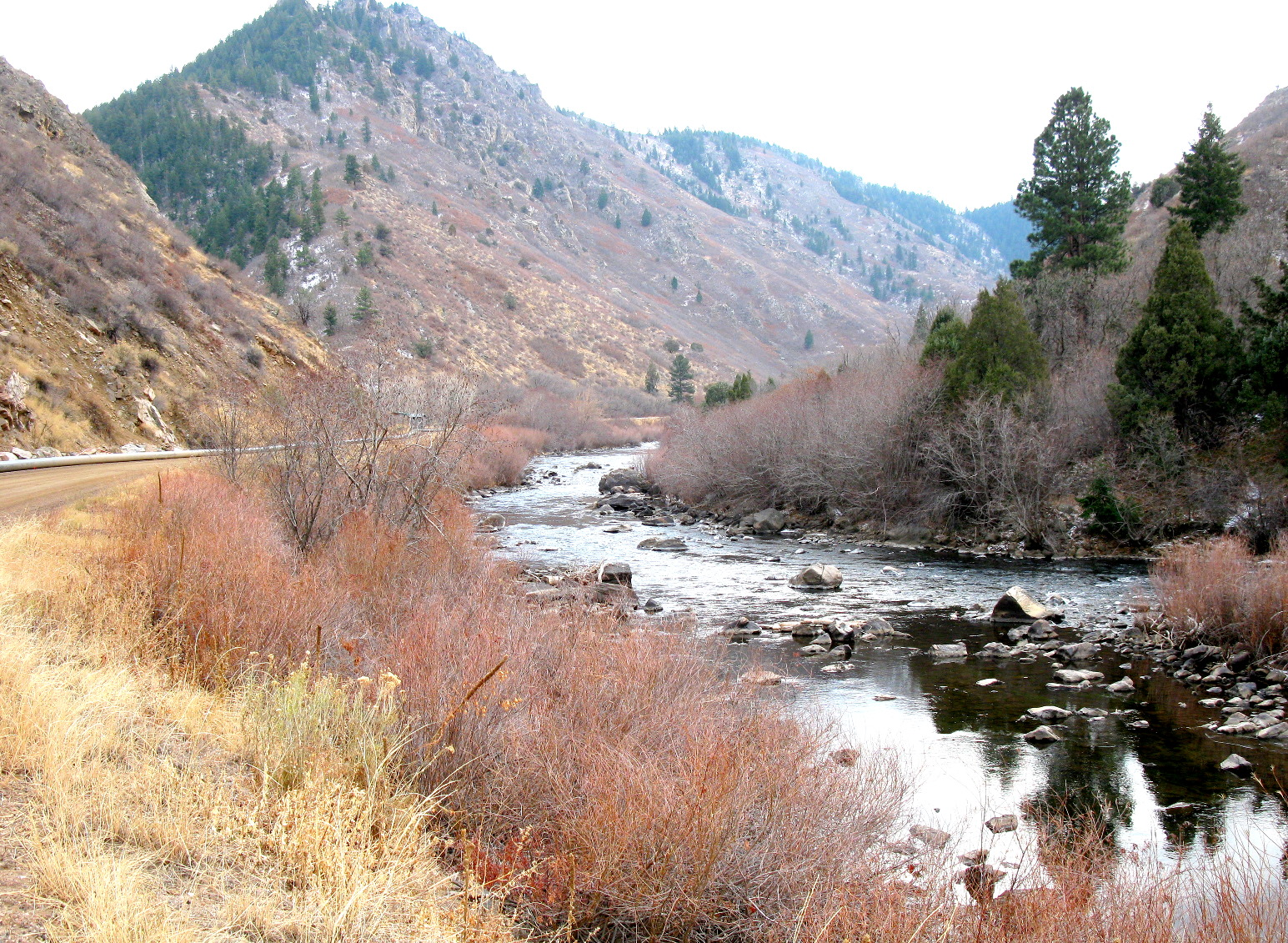 Coloradocasters looking in on an old friend for Waterton canyon fishing report