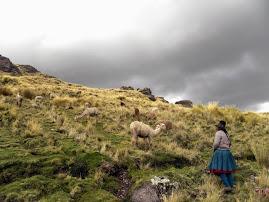 Microcuenca Huacrahuacho