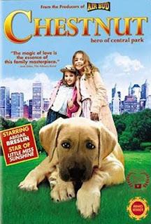Фильмы с участием животных Chestnut_hero_central_park