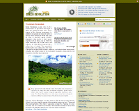 Blogspot Template 2010