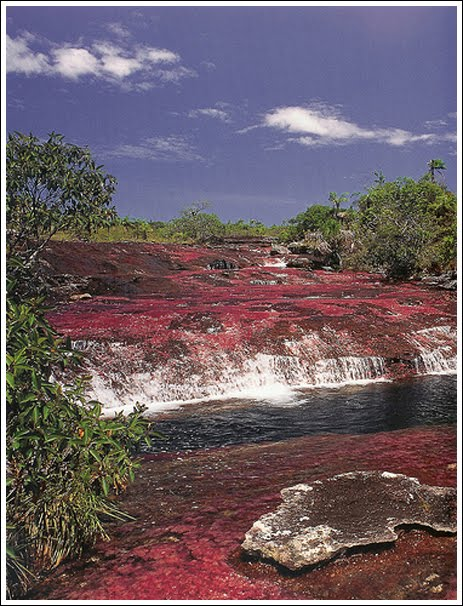 Foto sungai terindah