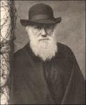 2009: Aniversario 150 de la publicación del Origen de las Especies