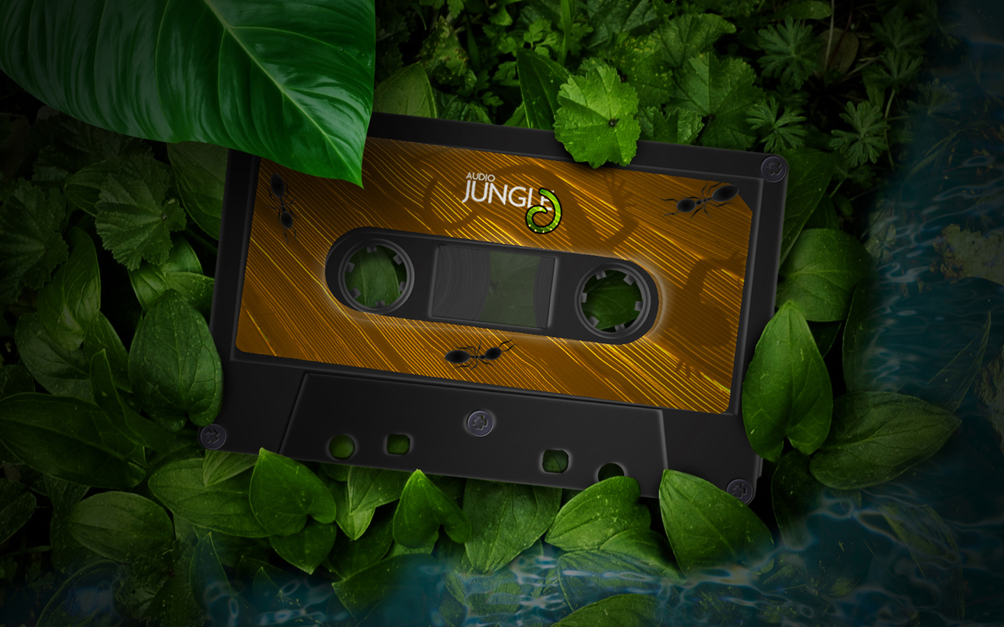 WALLPAPERS OF JUNGLE 25286 2529