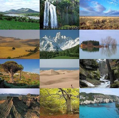 Ecosistema ecosistema del agua for Estanques en argentina