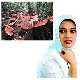 Berantas Illegal Logging, IPB, Marissa Haque Fawzi