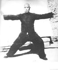 Grandmaster Chen Fa Ke