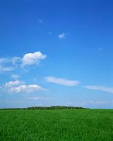 Paisaje hierba y cielo azul