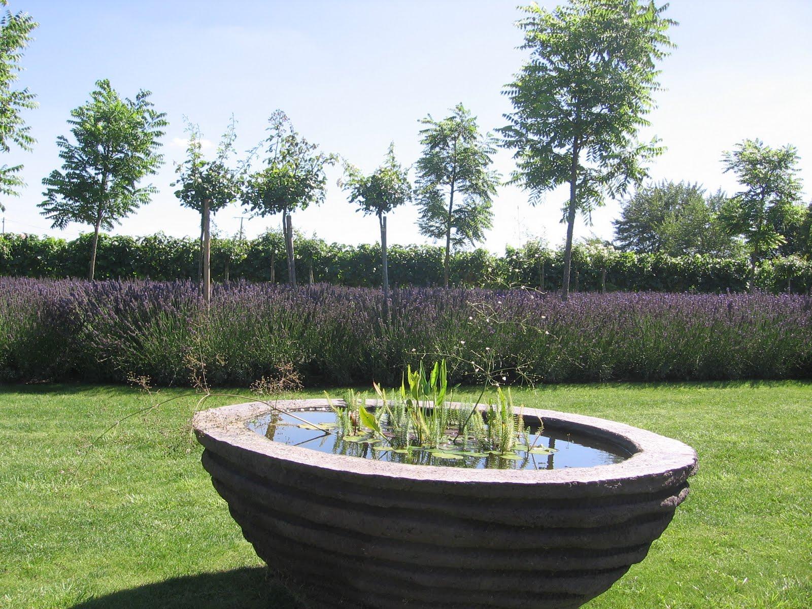 Beautiful Vasque De Jardin Contemporain Gallery - House Design ...