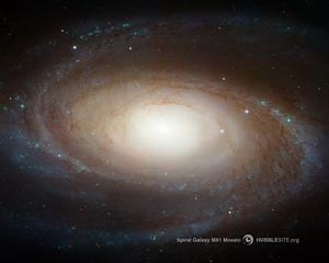 Galaxie spirale M81