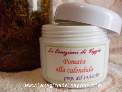 Calendula Tea For Dogs Eyes