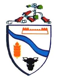 Rio Bueno (XIV Región)