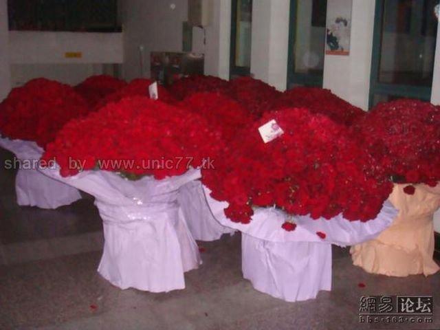 http://2.bp.blogspot.com/_EHi0bg7zYcQ/TJhV726ok-I/AAAAAAAAE6w/E31hjqyIf-E/s1600/ocean_of_red_roses_05.jpg