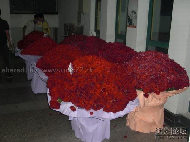http://2.bp.blogspot.com/_EHi0bg7zYcQ/TJhW-_m4SjI/AAAAAAAAE7A/9ZeV0XB7Mmg/s1600/ocean_of_red_roses_03.jpg